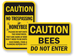 Bee Safety