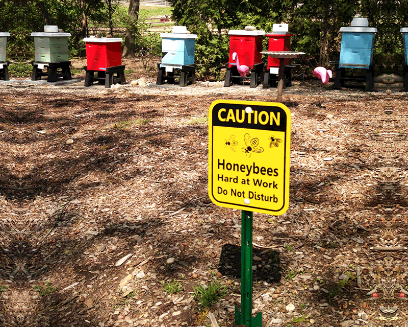 Bee Safety Signs Mysafetysign Com