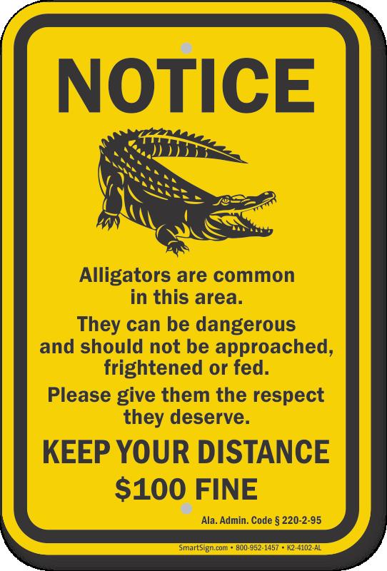 Keep Your Distance, Alabama Alligator Warning Sign