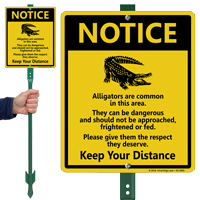 Alligators Common in Area, Keep Distance Lawnboss Sign