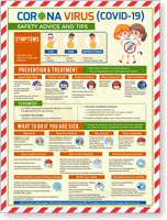 Flu Safety Advice Tips Symptoms And Prevention Poster