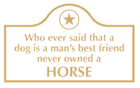 Funny Horse Engraved Arch Marker