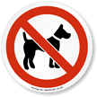 No Dog Allowed ISO Sign