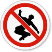 No Skateboarding ISO Prohibition Sign