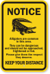 Alligators Area Keep Your Distance Notice Sign