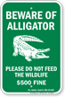 Florida Alligator Warning Sign