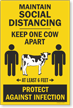 Maintain Social Distancing Keep One Cow Apart Sidewalk Sign Panel