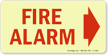 Glow-In-The-Dark Fire Alarm Sign onmouseover =
