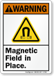 Magnetic Field In Place ANSI Warning Sign
