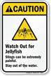 Watch Out for Jellyfish – Stings can be extremely painful. – Stay out of the water. (with graphic)