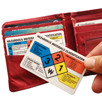 2-Sided Safety Wallet Card