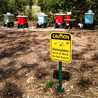 Caution - Honey Bees At Work,Safety sign
